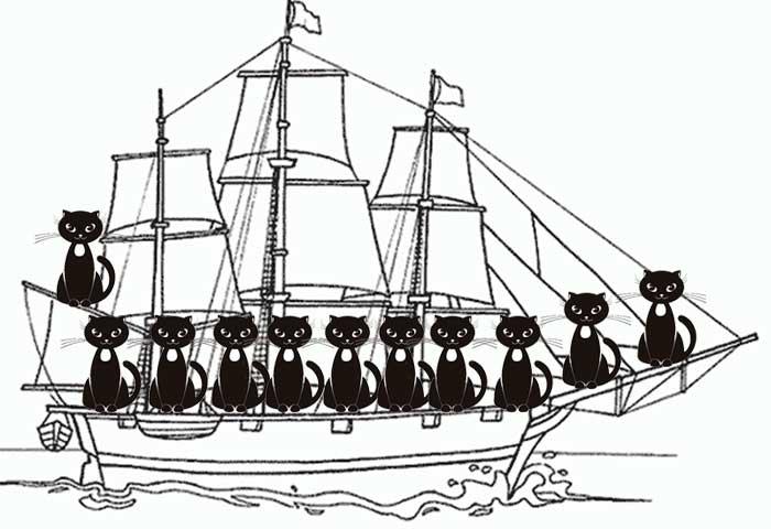 Les futurs maine coons sur le Mayflower en route pour l'Amérique