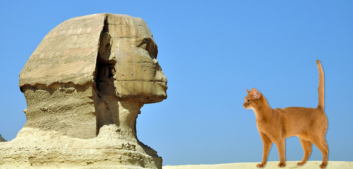 Chat et Egypte antique