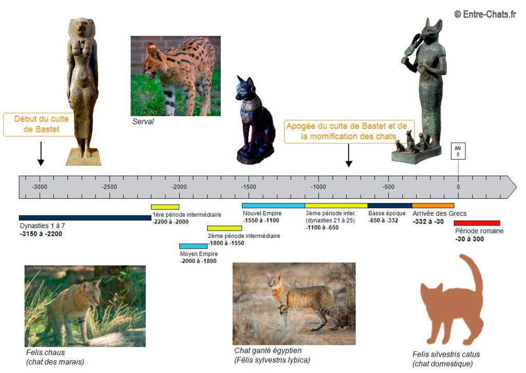 Frise de l'Egypte antique et du chat avec le culte de Bastet