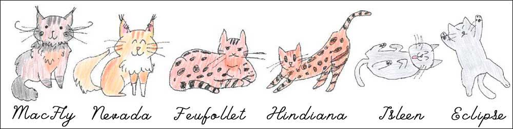 Les six chats du blog Entre Chats dessinés au stylo à bille