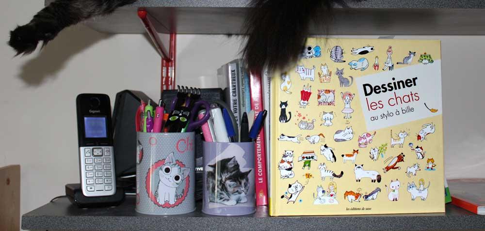 Livre dessiner les chats au stylo à bille, c'est facile