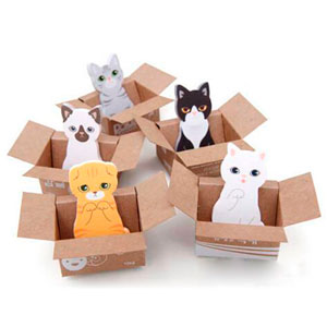 Cat in the box, notes autocollantes, rayon papeterie chat